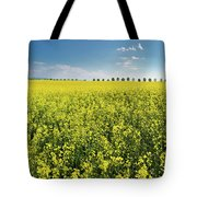 Yellow Canola Field And Blue Sky Spring Landscape Tote Bag