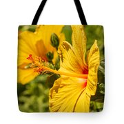Yellow Hibiscus Tote Bag by Keith Smith