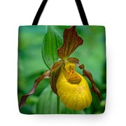 Yellow Lady's Slipper Tote Bag