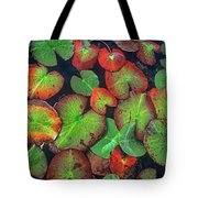 Yellow Pond Lily, Weminuche Wilderness Tote Bag