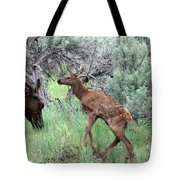 Yellowstone Elk Calf And Cow Tote Bag