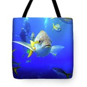 Yellowtails Tote Bag