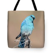 You Lookiing At Me Tote Bag