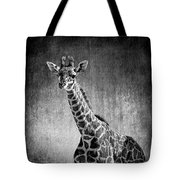 Young Giraffe Black And White Tote Bag