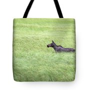 Young Moose Tote Bag