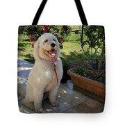 Zoey Towel Tote Bag