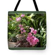 Crescent Light On Tropicals Tote Bag