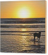 A Mans Best Friend Sunset Wood Print