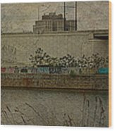 Across The Schuylkill River In Philadelphia - Pennsylvania - Usa Wood Print