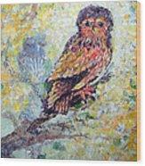 Acrylic Painting Fuzzy Yellow Owl  Wood Print