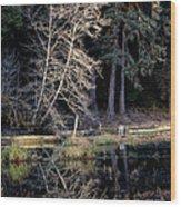 Alder Tree Reflection In Pond Wood Print