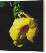 All Yellow Wood Print