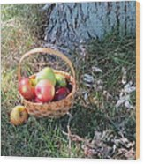Apples Everywhere Wood Print