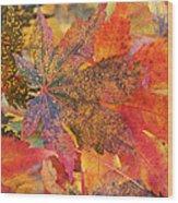 Autumn Audacity I Wood Print