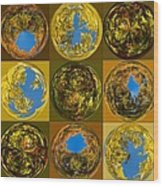 Autumn  Spheres Wood Print