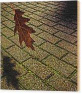 Autumnal Equinox Wood Print