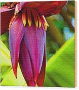 Banana Flower Glow Wood Print