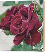 Beautiful Red Roses Wood Print