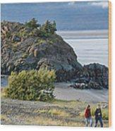 Beluga Point  Wood Print