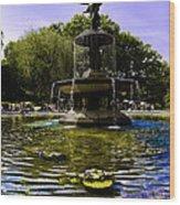 Bethesda Fountain - Central Park  Wood Print