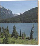 Big Sky Montana Wood Print