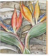 Bird Of Paradise 04 Elena Yakubovich Wood Print