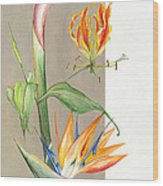 Bird Of Paradise 09 Elena Yakubovich Wood Print