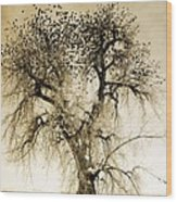 Bird Tree Fine Art  Mono Tone And Textured Wood Print