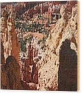 Bryce Canyon Overlook Wood Print