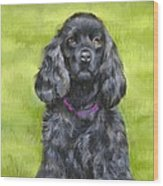 Budwood The Black Cocker Spaniel Wood Print