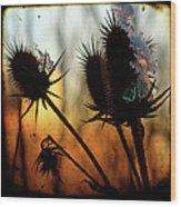C Est La Vie Sunset Wood Print