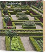 Cabbage Garden Chateau Villandry  Wood Print