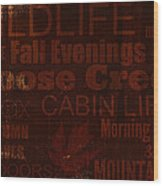 Cabin Life Wood Print