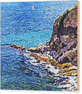 California Coastline  Wood Print by David Lloyd Glover