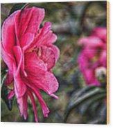 Camellia De Mamie Wood Print