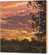 Canyon Dechelly Sunset In Copper And Gold Wood Print