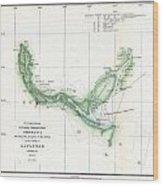 Coast Survey Chart Or Map Of The Savannah River Ans Savannah Georgia Wood Print