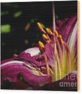 Day Lillies Wood Print