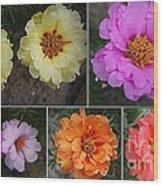 Desert Roses Delight Wood Print