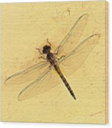 Dragonfly On Yellow Wall Wood Print