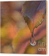 Drip In Pink -1 Long Wood Print