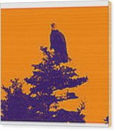 Eagle Scout At Sunset Wood Print