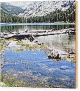East Lake Wood Print