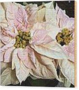Euphorbia Marron Wood Print
