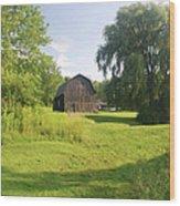 Evergreen Trails 7523 Wood Print
