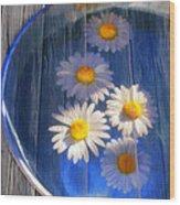 Five Daisies Wood Print