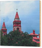 Flagler College St Augustine Fl Wood Print
