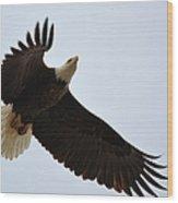 Flight Of Freedom Wood Print