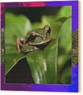 Frog Hideous Green Amphibian Wood Print