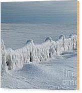 Frozen Pier Wood Print